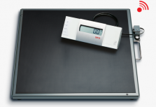 Scale Seca 634 Bariatric
